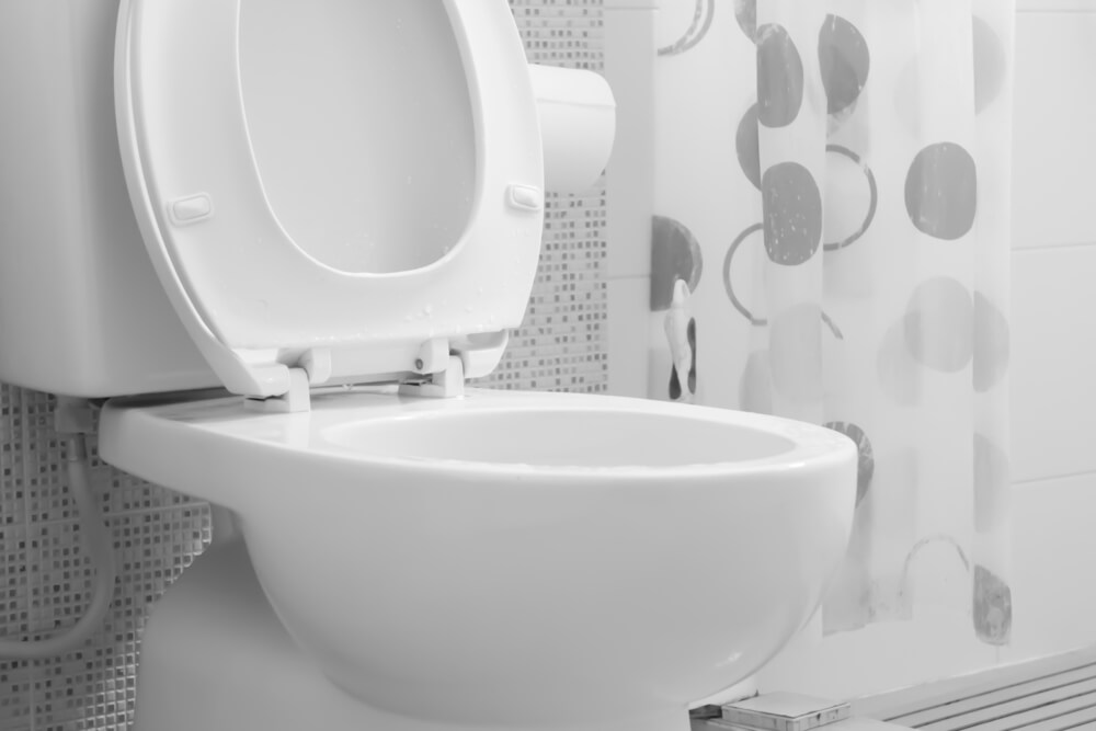 low-flow toilet