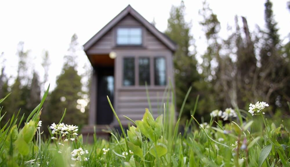 Live big in a tiny living space: tiny house on grassy field