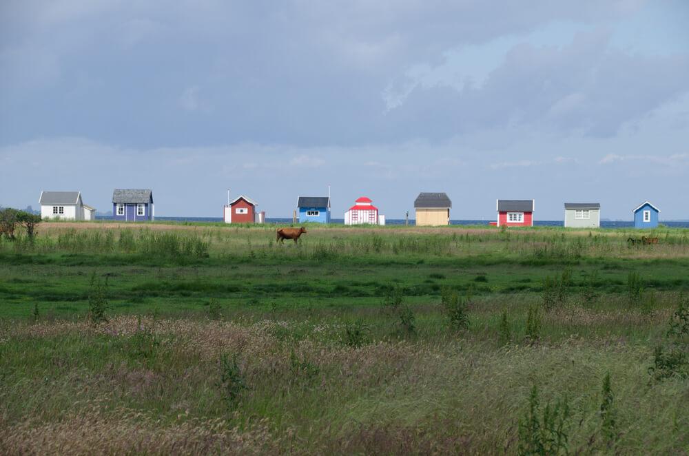 tiny houses and taxes - a row of colorful tiny houses in a grassy land