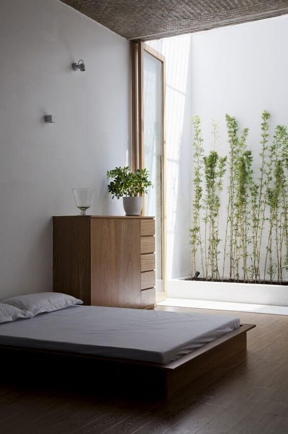 extreme minimalist room with greenery